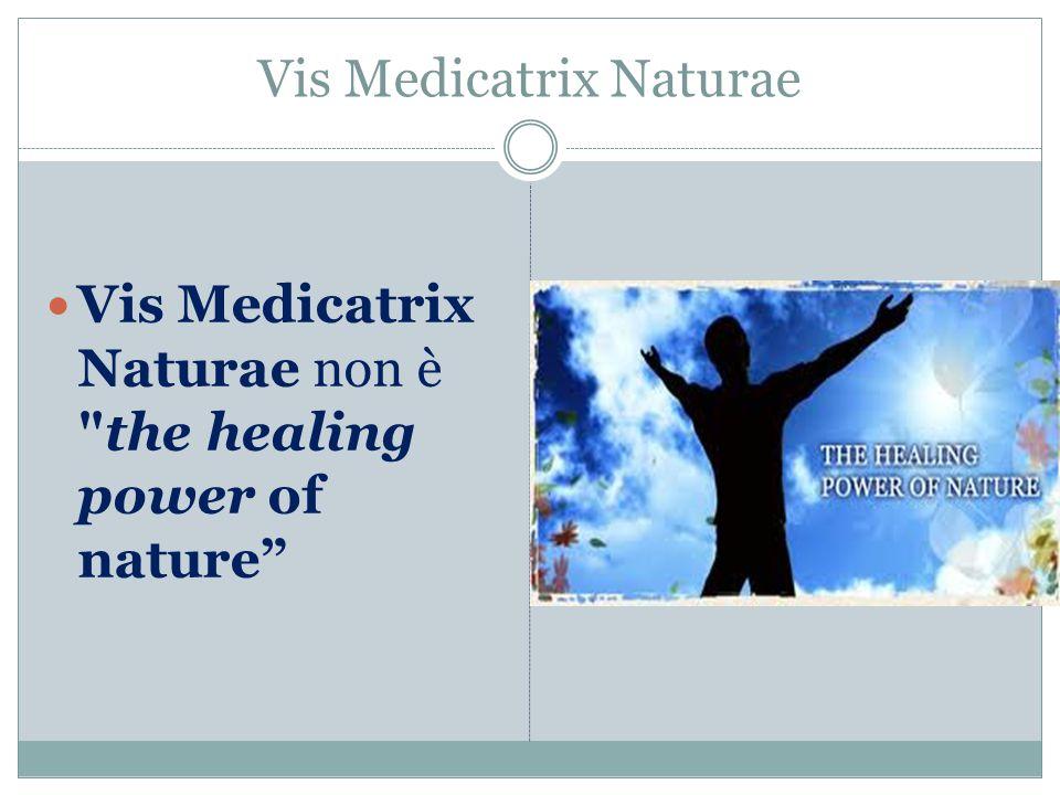 Vis Medicatrix Naturae