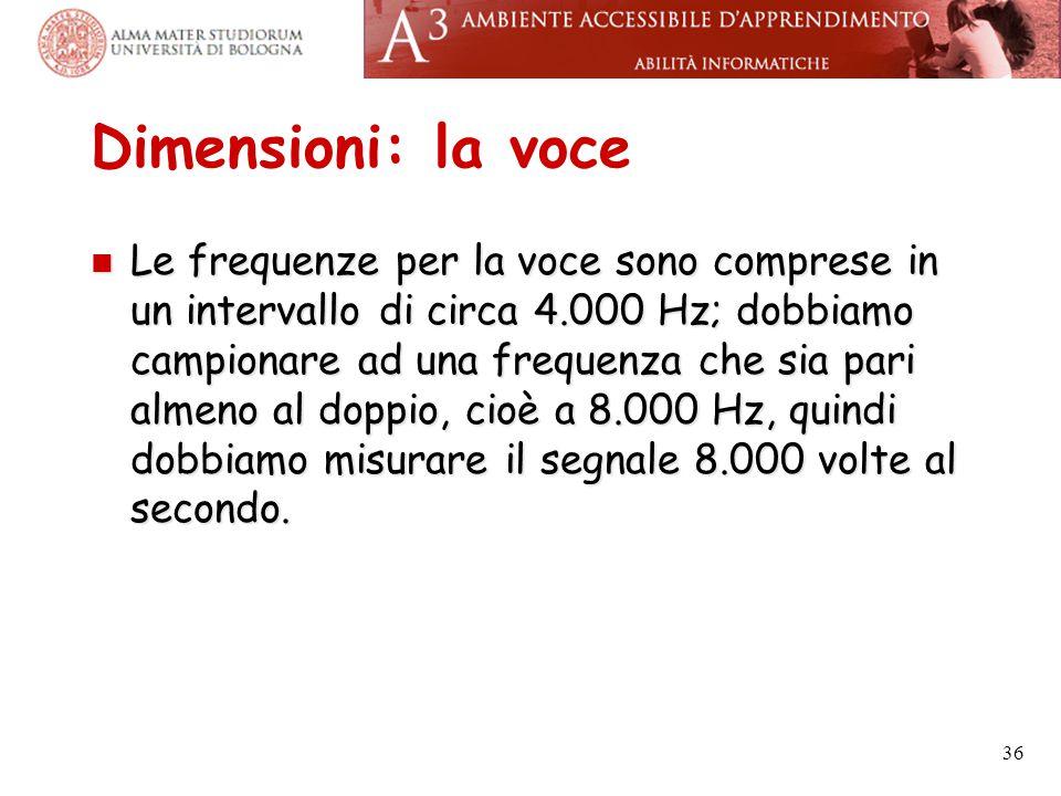 Dimensioni: la voce