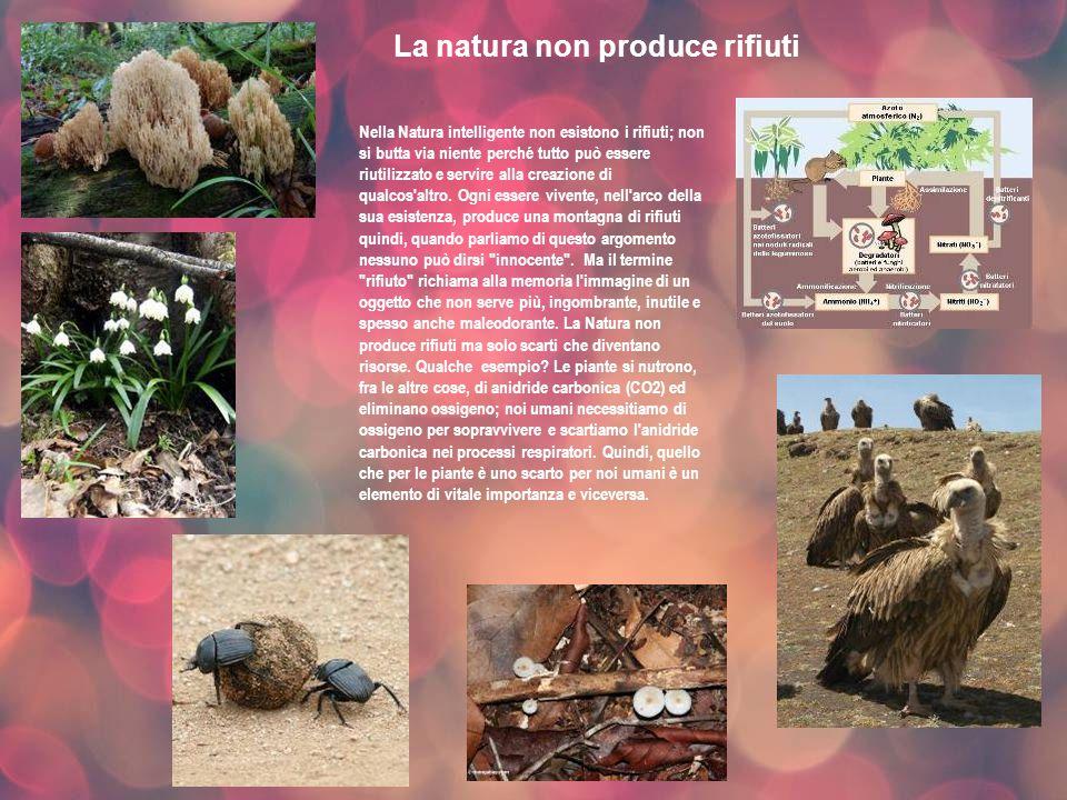 La natura non produce rifiuti
