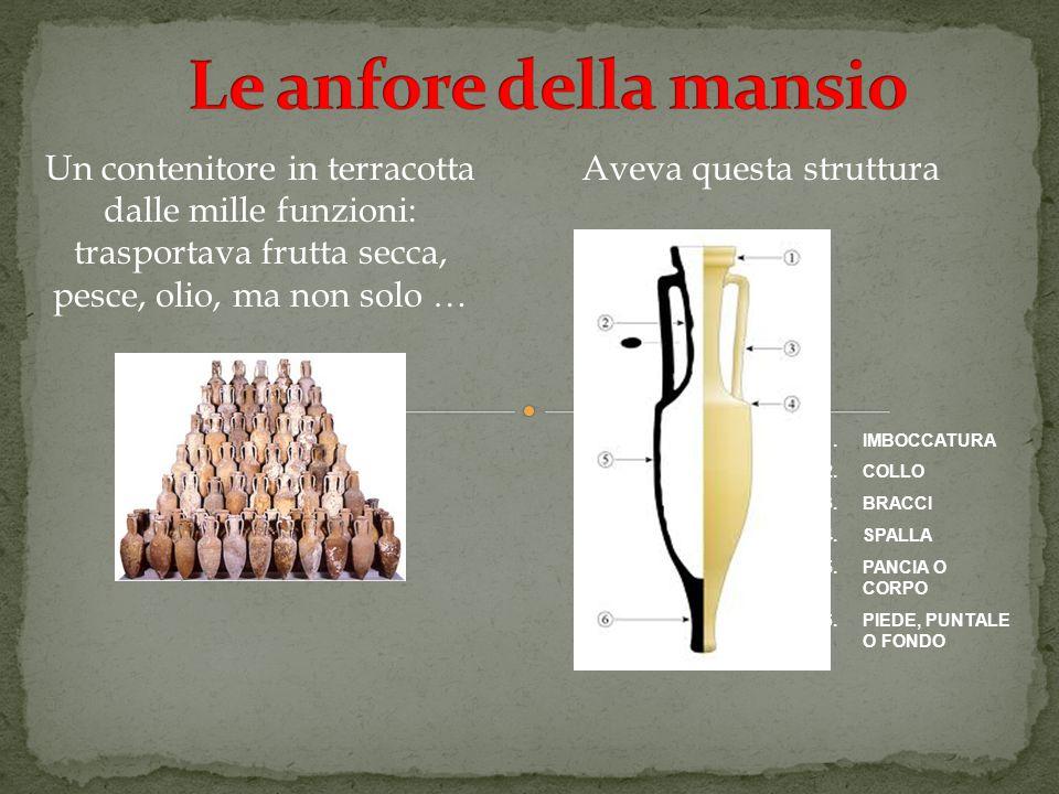 Le anfore della mansio Un contenitore in terracotta dalle mille funzioni: trasportava frutta secca, pesce, olio, ma non solo …