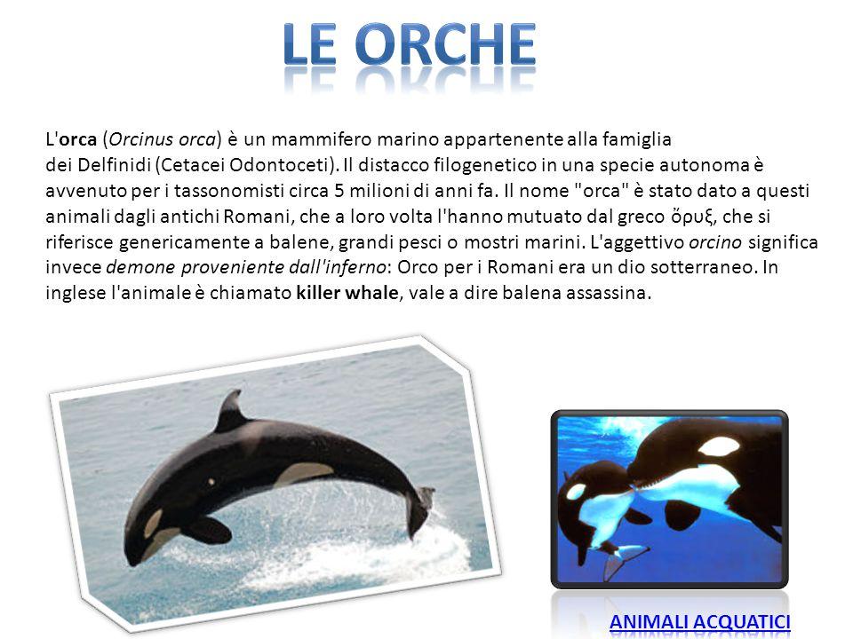 LE orcHE