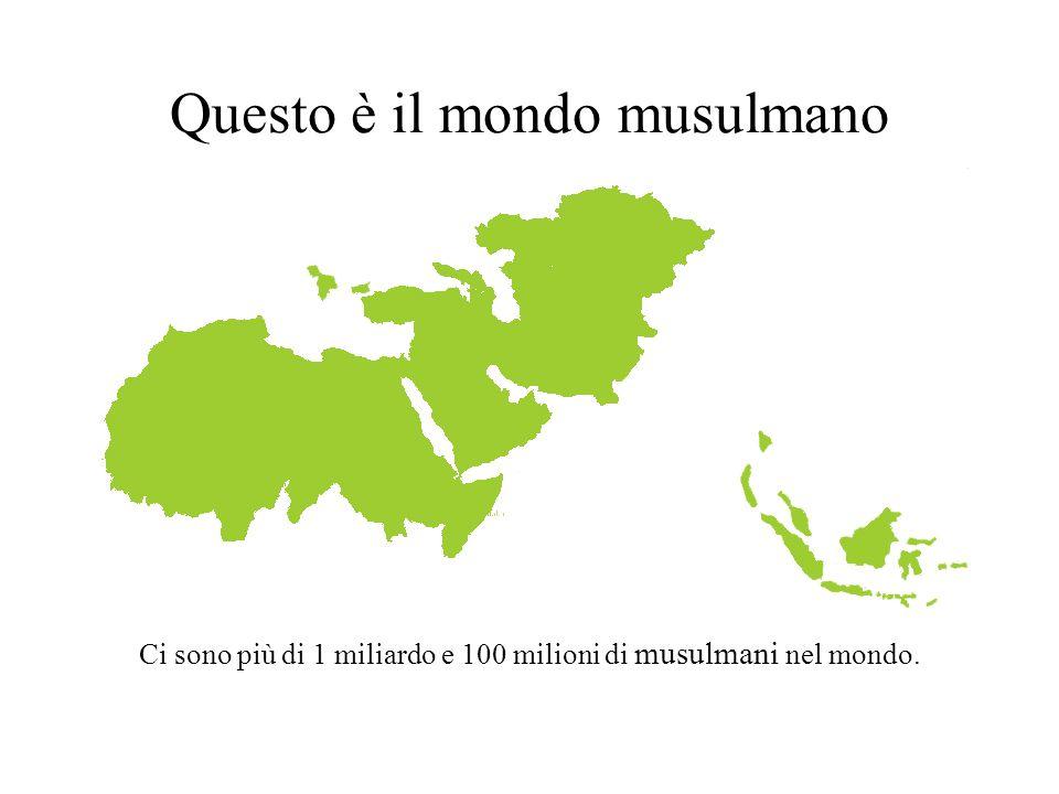 Questo è il mondo musulmano