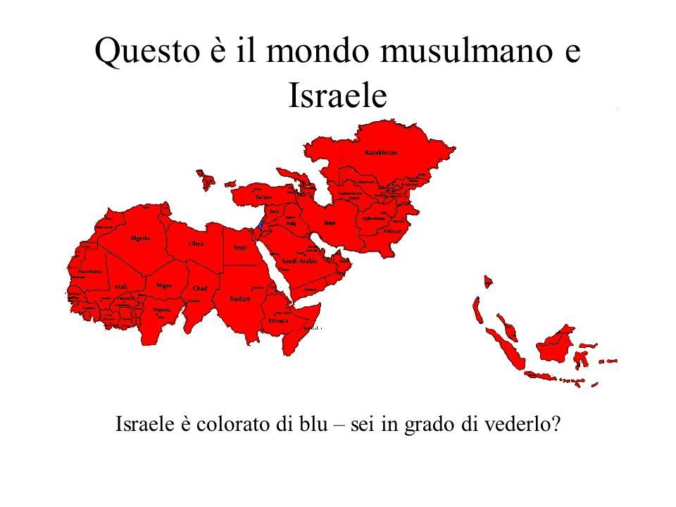 Questo è il mondo musulmano e Israele