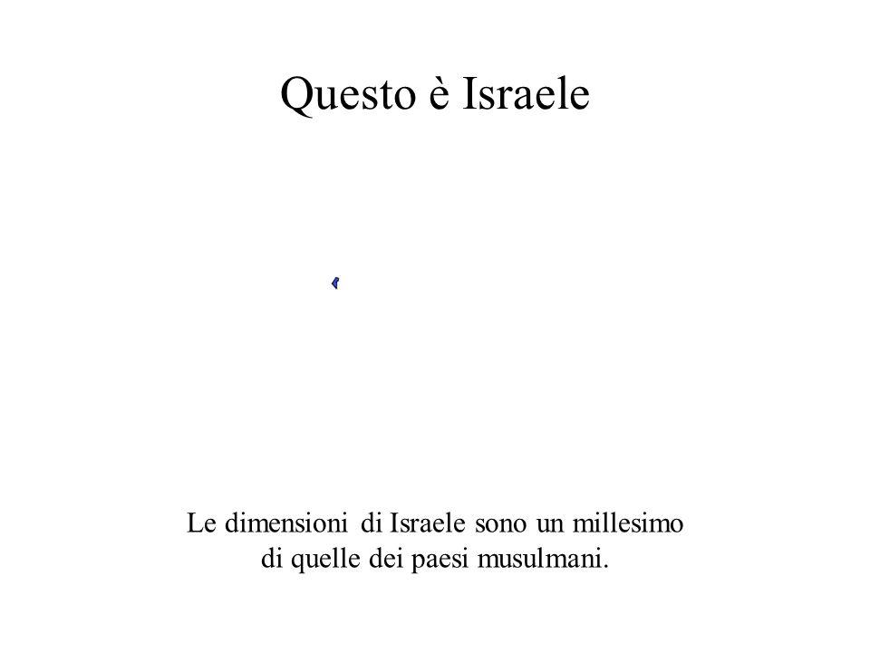Questo è Israele Le dimensioni di Israele sono un millesimo
