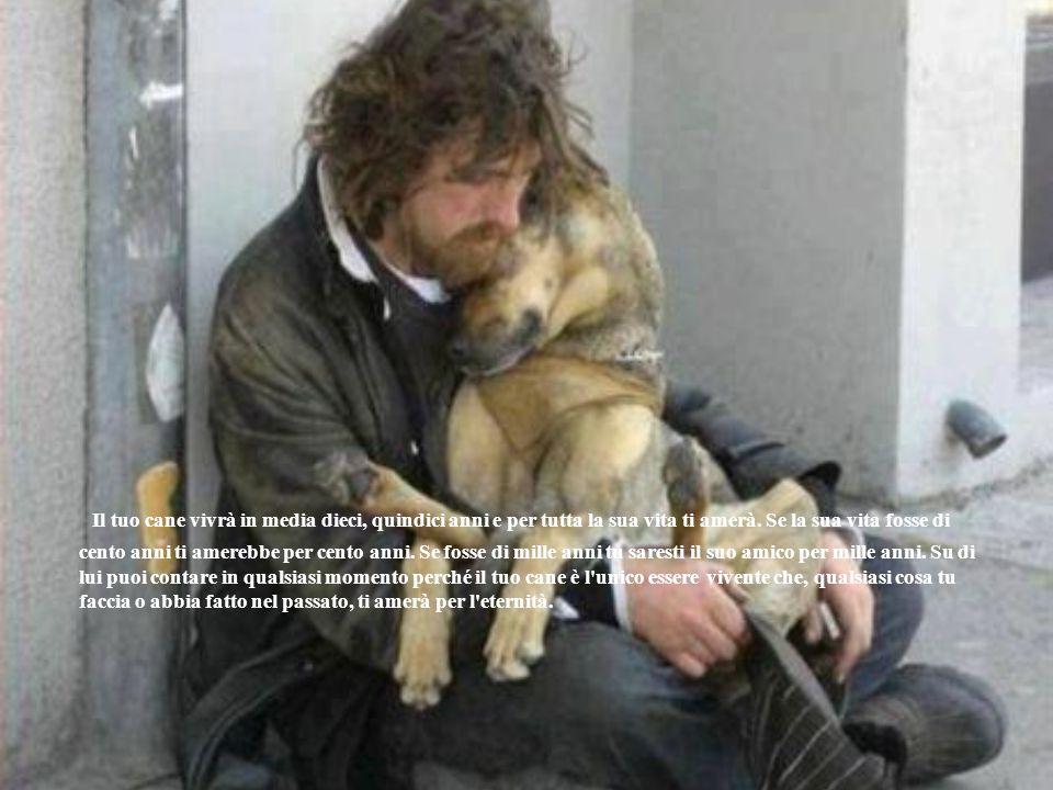 Il tuo cane vivrà in media dieci, quindici anni e per tutta la sua vita ti amerà.