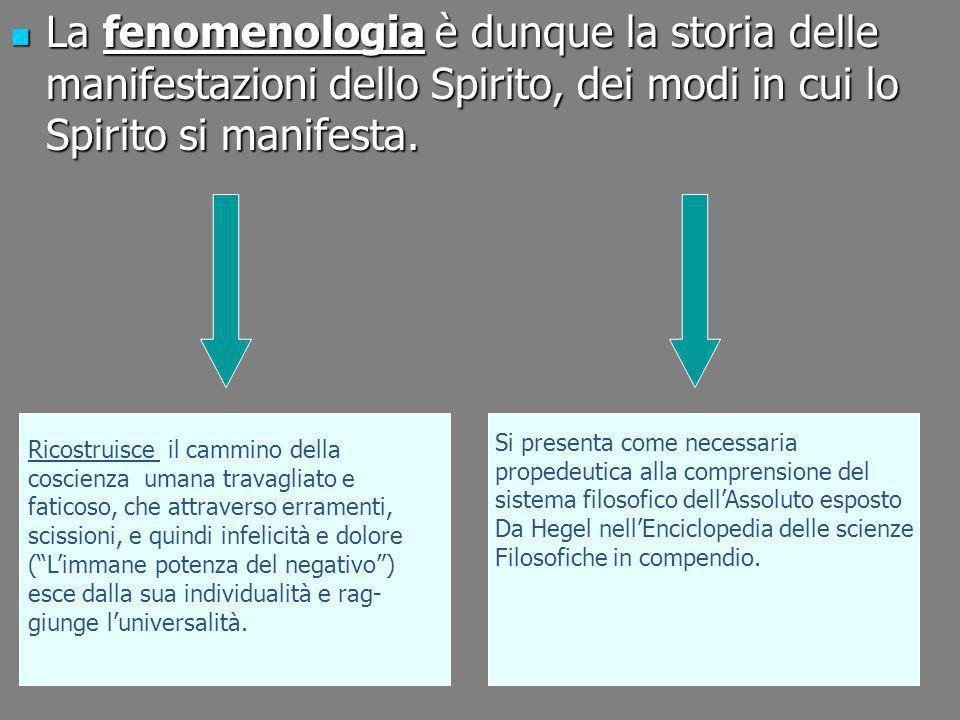 La fenomenologia è dunque la storia delle manifestazioni dello Spirito, dei modi in cui lo Spirito si manifesta.