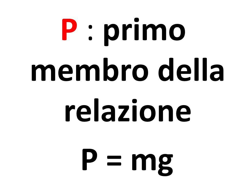P : primo membro della relazione P = mg