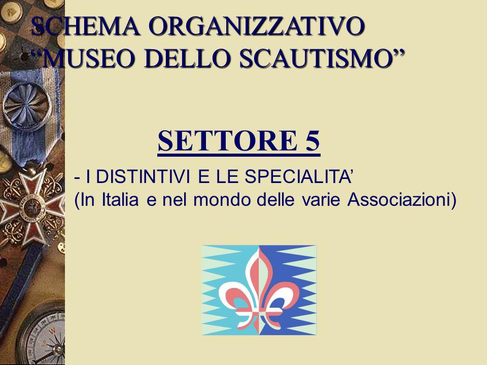 SETTORE 5 SCHEMA ORGANIZZATIVO MUSEO DELLO SCAUTISMO