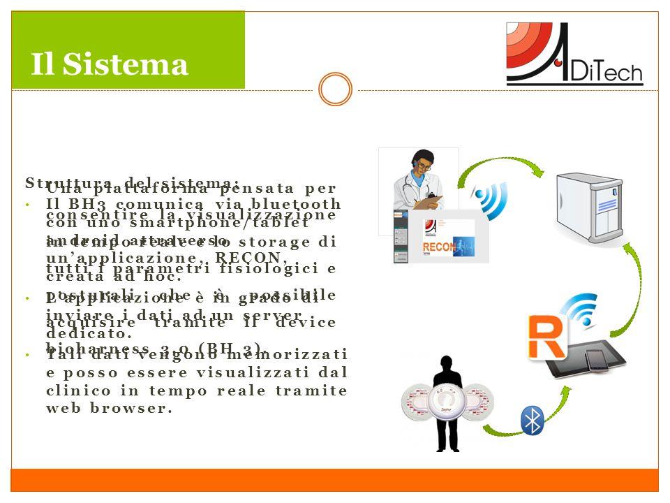 Il Sistema Struttura del sistema: