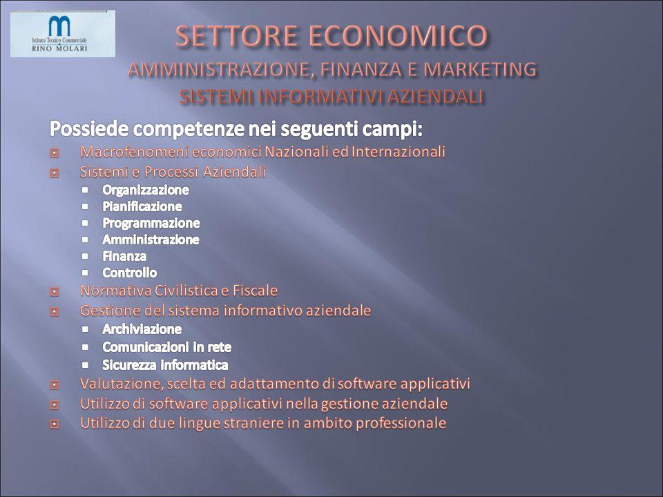 SETTORE ECONOMICO AMMINISTRAZIONE, FINANZA E MARKETING SISTEMI INFORMATIVI AZIENDALI