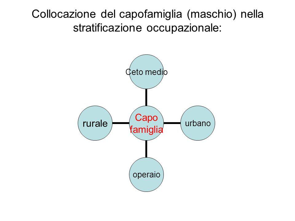 Collocazione del capofamiglia (maschio) nella stratificazione occupazionale: