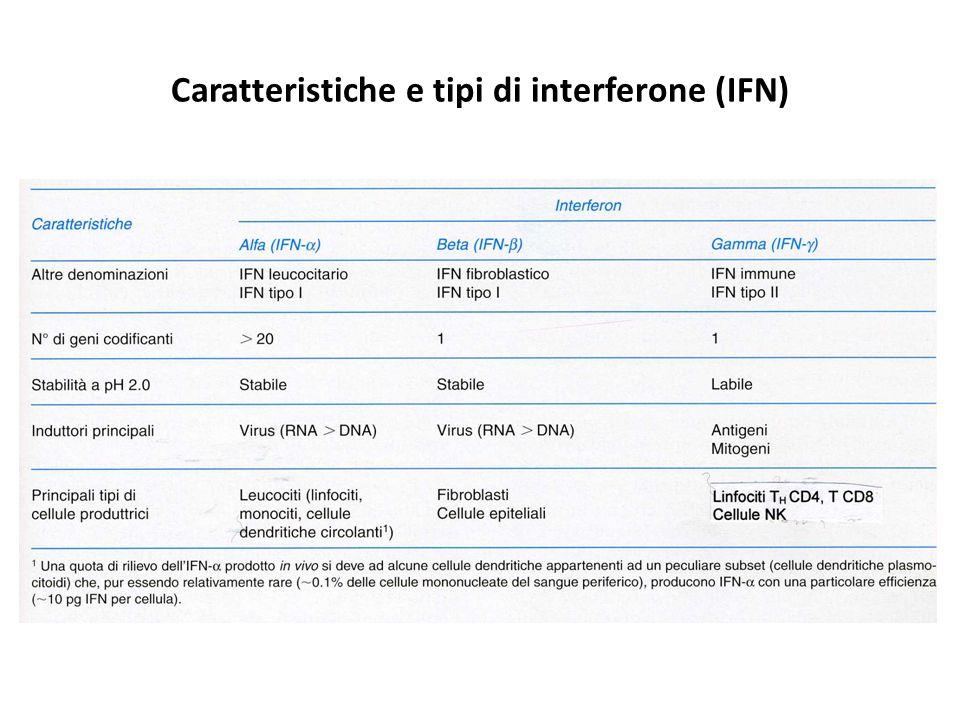 Caratteristiche e tipi di interferone (IFN)