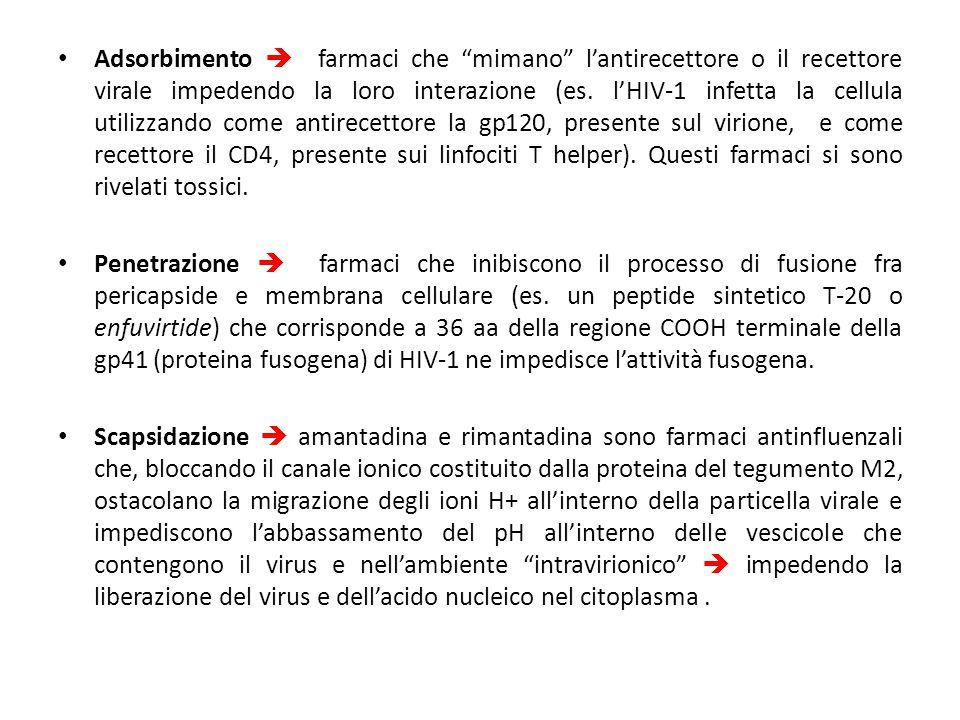 Adsorbimento  farmaci che mimano l'antirecettore o il recettore virale impedendo la loro interazione (es. l'HIV-1 infetta la cellula utilizzando come antirecettore la gp120, presente sul virione, e come recettore il CD4, presente sui linfociti T helper). Questi farmaci si sono rivelati tossici.