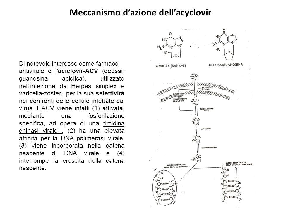Meccanismo d'azione dell'acyclovir