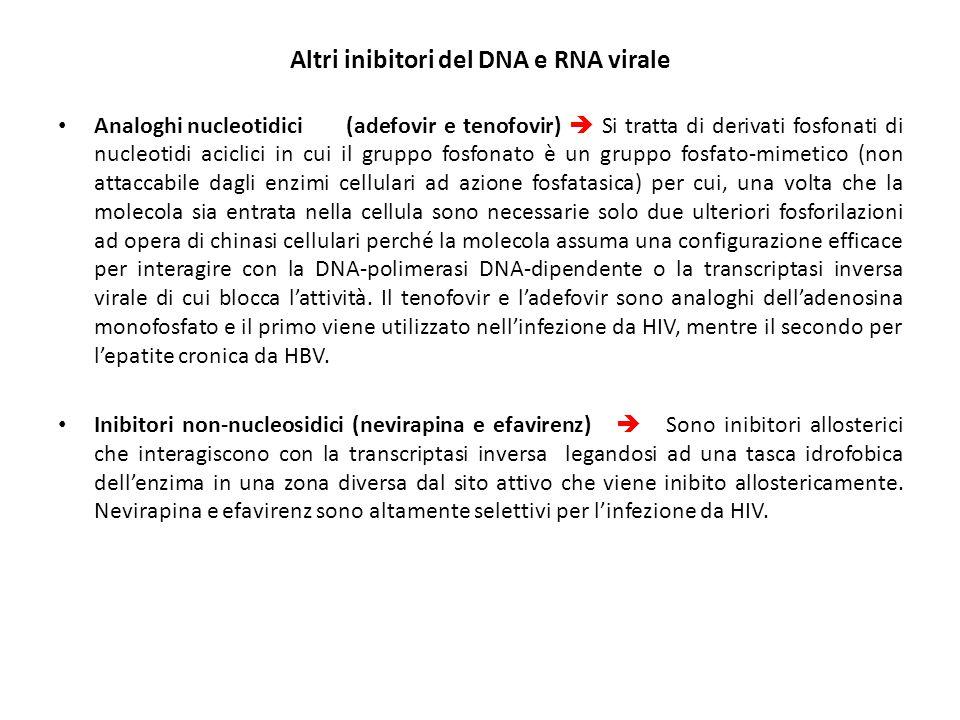 Altri inibitori del DNA e RNA virale