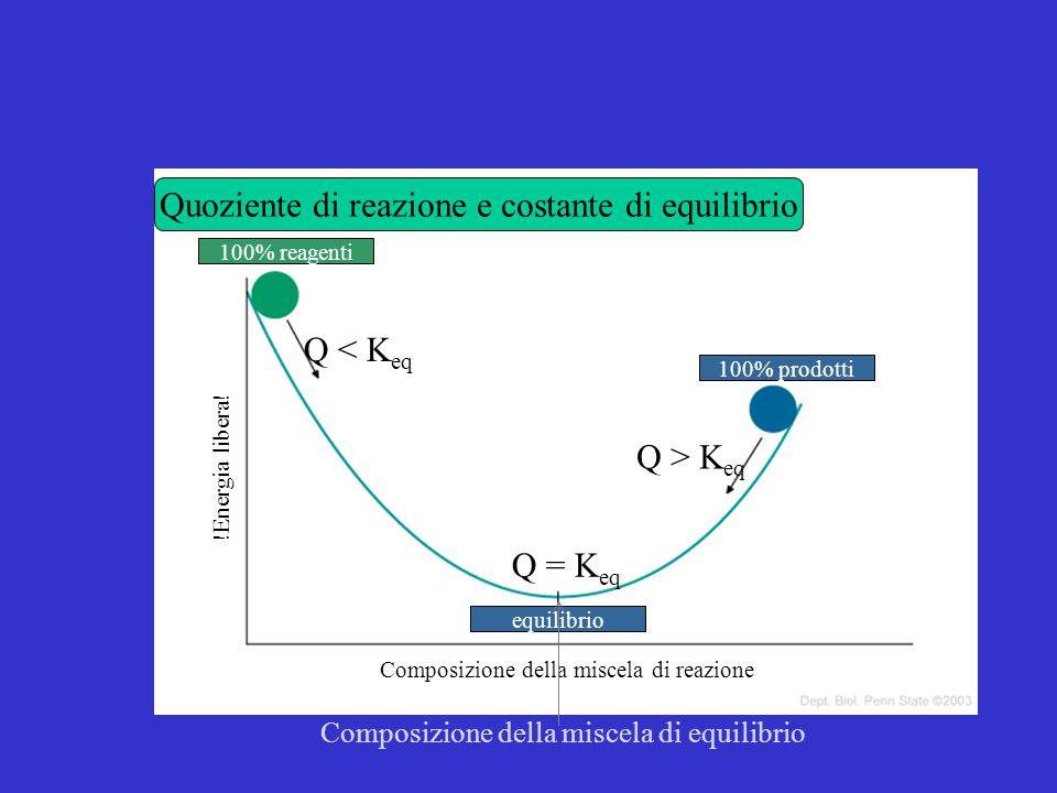 Quoziente di reazione e costante di equilibrio