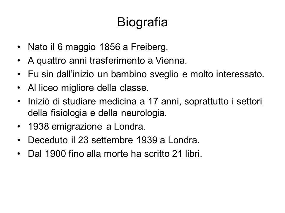 Biografia Nato il 6 maggio 1856 a Freiberg.