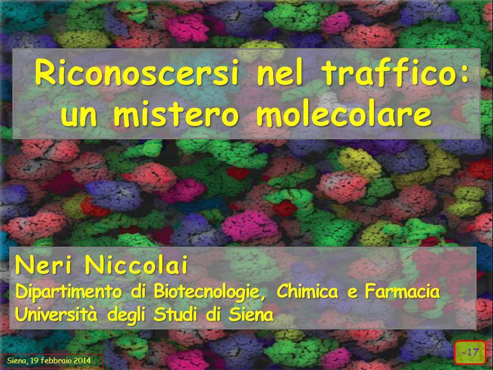 Riconoscersi nel traffico: un mistero molecolare