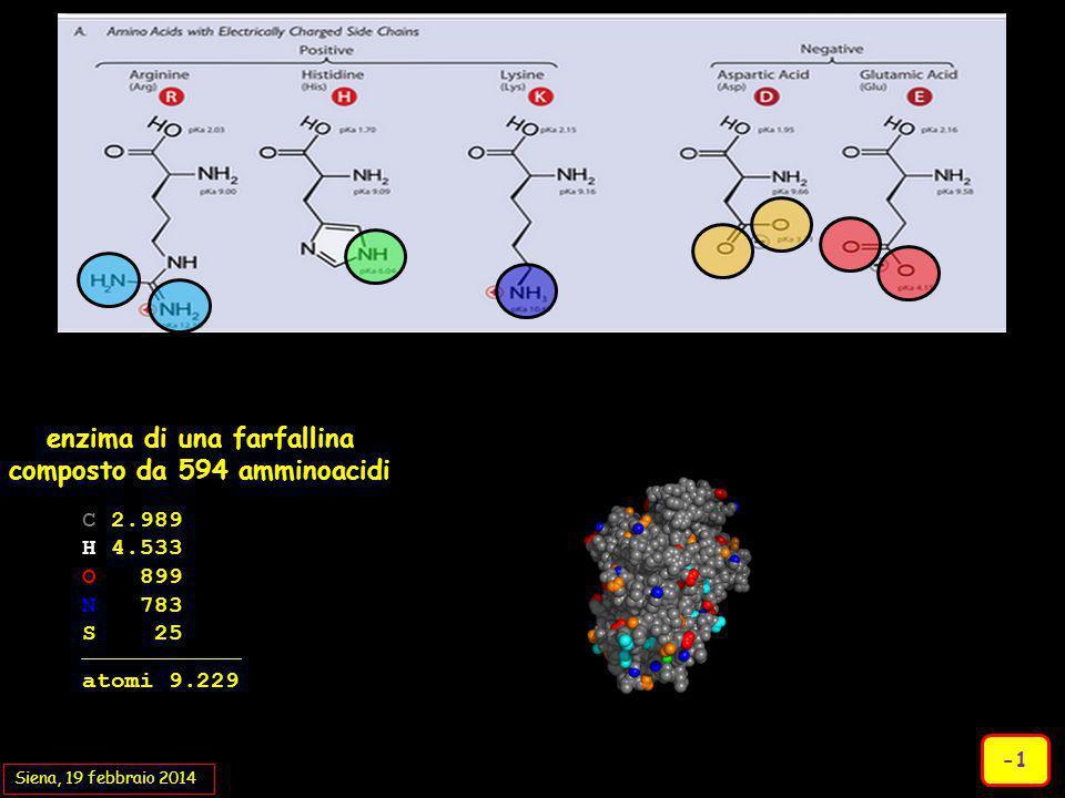 enzima di una farfallina composto da 594 amminoacidi