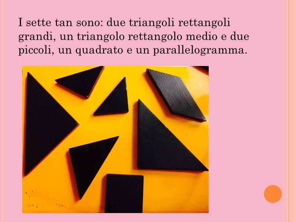 I sette tan sono: due triangoli rettangoli grandi, un triangolo rettangolo medio e due piccoli, un quadrato e un parallelogramma.