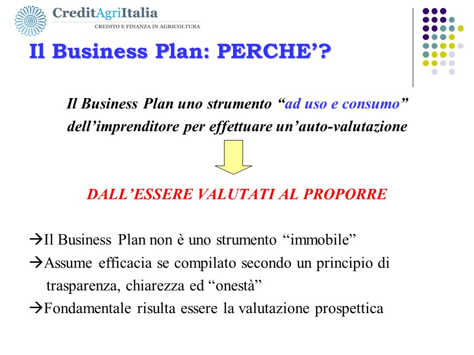 Il Business Plan: PERCHE'