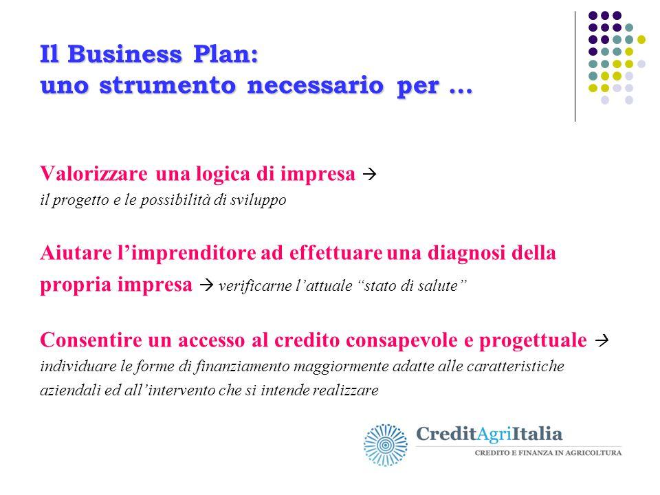 Il Business Plan: uno strumento necessario per …