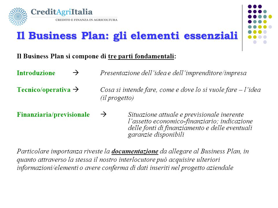 Il Business Plan: gli elementi essenziali
