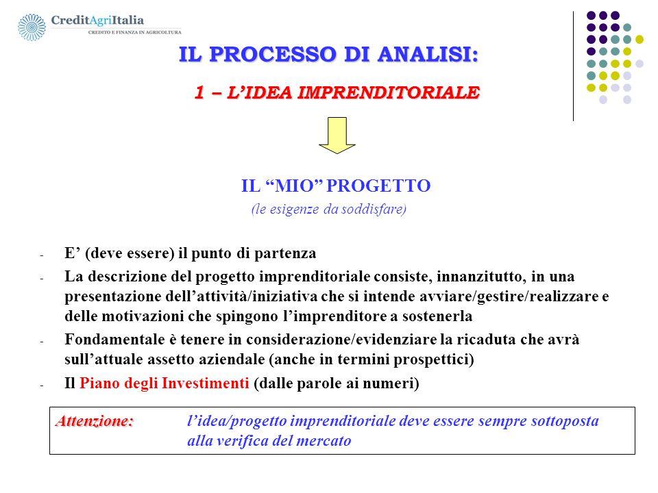 IL PROCESSO DI ANALISI: 1 – L'IDEA IMPRENDITORIALE