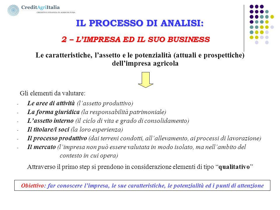 IL PROCESSO DI ANALISI: 2 – L'IMPRESA ED IL SUO BUSINESS