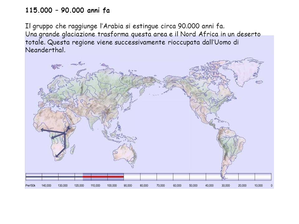 115.000 – 90.000 anni fa Il gruppo che raggiunge l'Arabia si estingue circa 90.000 anni fa.