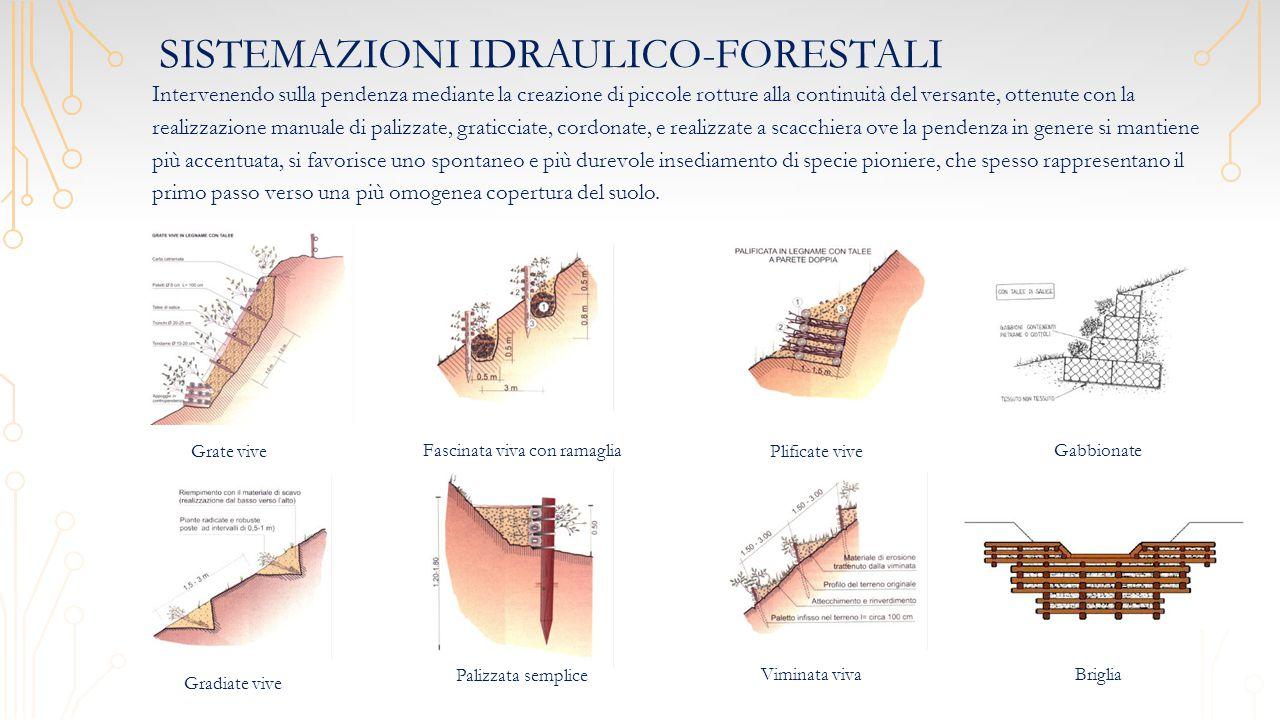 Sistemazioni idraulico-forestali