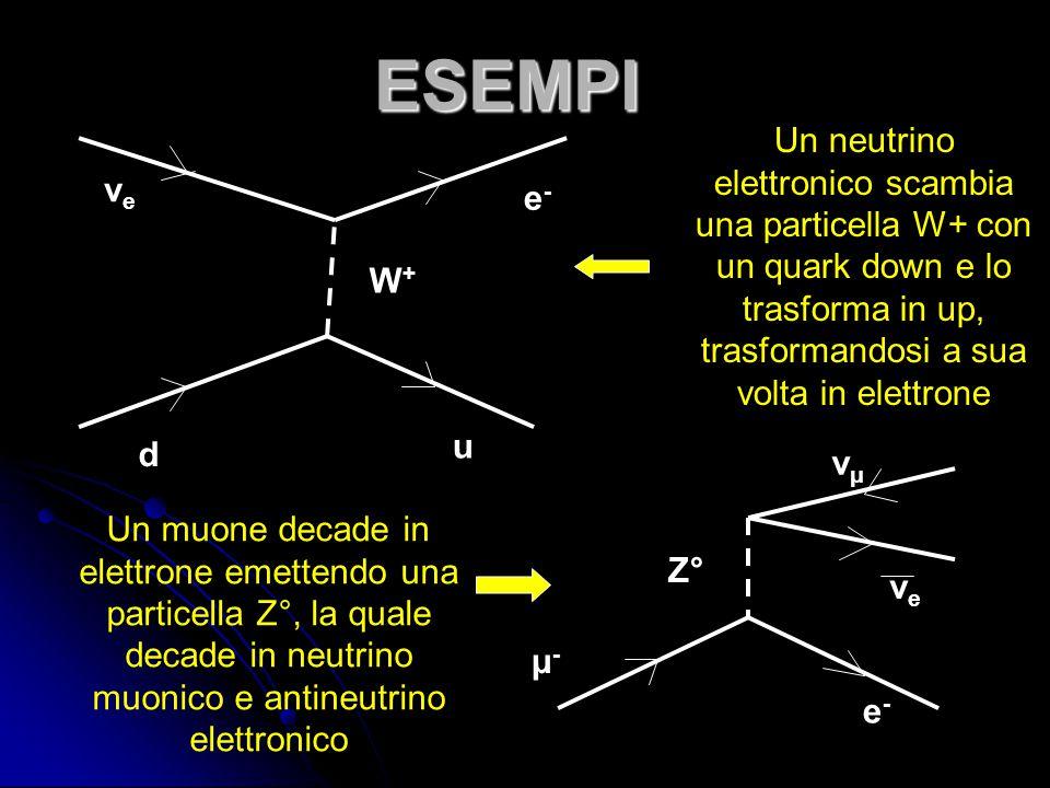 ESEMPI Un neutrino elettronico scambia una particella W+ con un quark down e lo trasforma in up, trasformandosi a sua volta in elettrone.