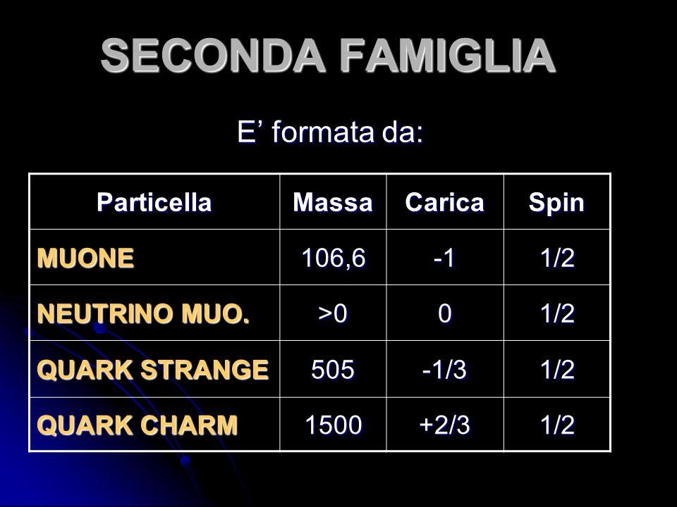 SECONDA FAMIGLIA E' formata da: Particella Massa Carica Spin MUONE