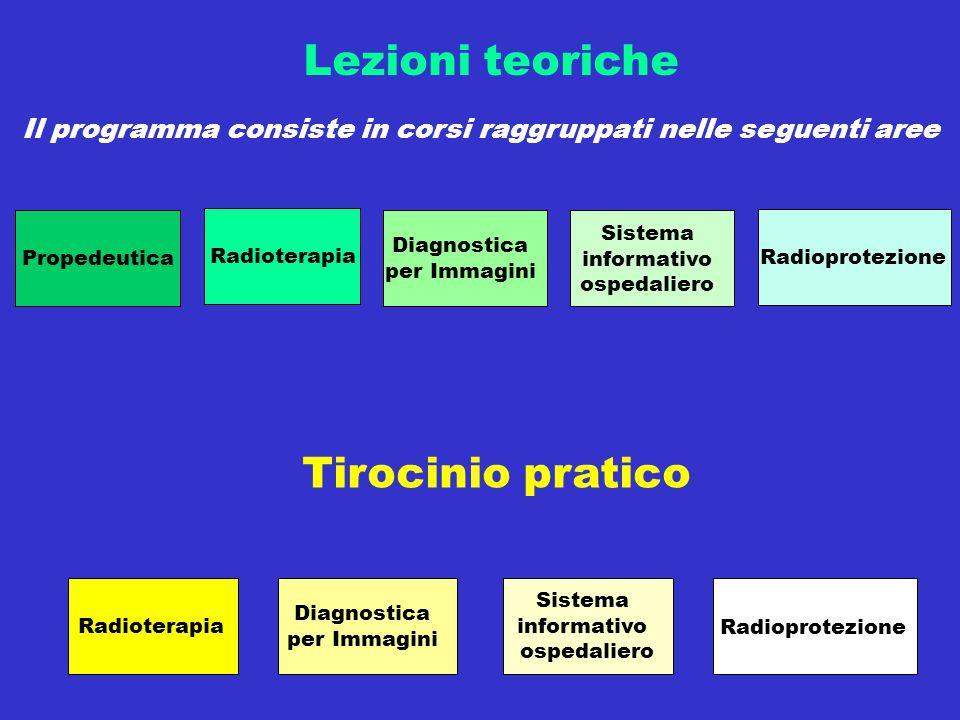 Il programma consiste in corsi raggruppati nelle seguenti aree