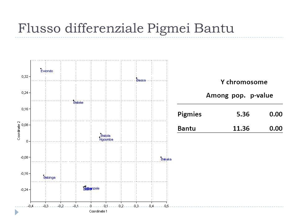 Flusso differenziale Pigmei Bantu