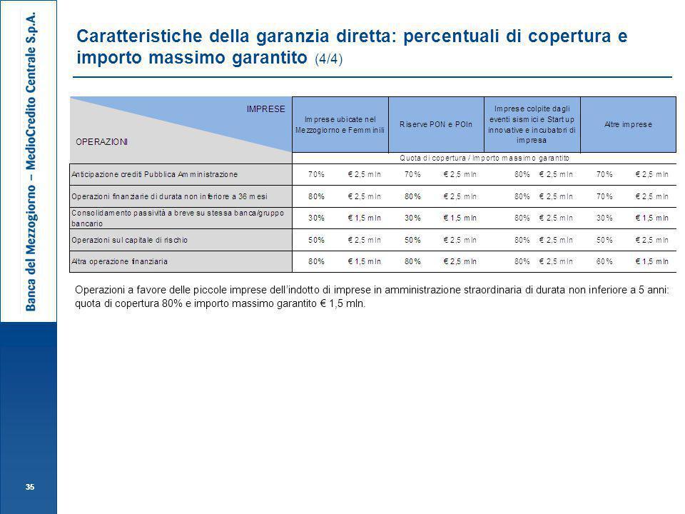 Caratteristiche della garanzia diretta: percentuali di copertura e importo massimo garantito (4/4)