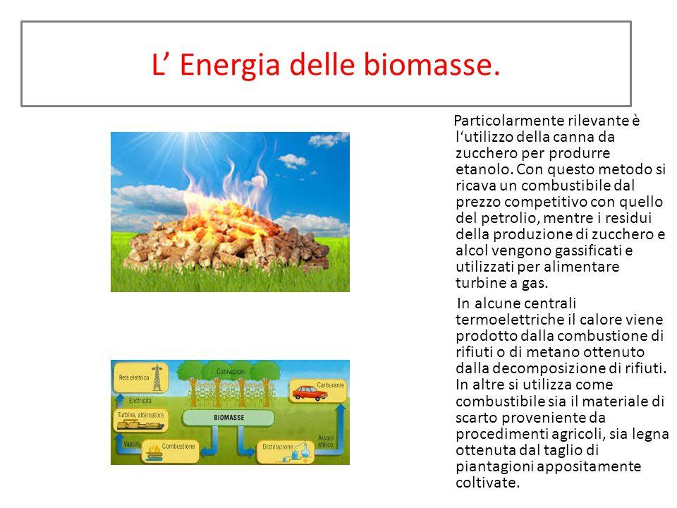 L' Energia delle biomasse.