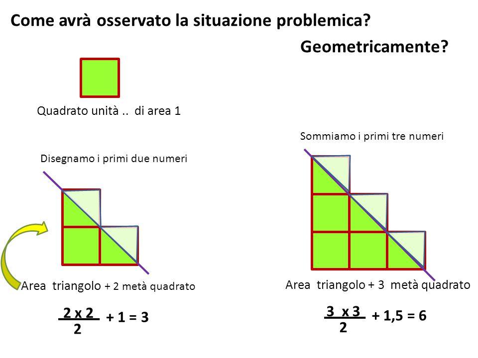 Come avrà osservato la situazione problemica Geometricamente
