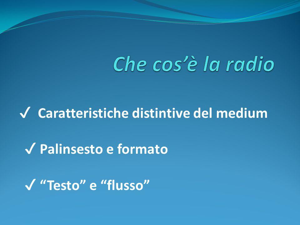 Che cos'è la radio ✔ Palinsesto e formato ✔ Testo e flusso