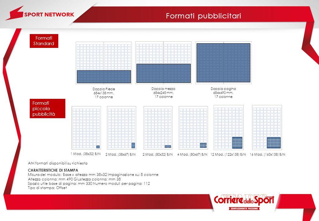 Formati pubblicitari Formati Standard Formati piccola pubblicità