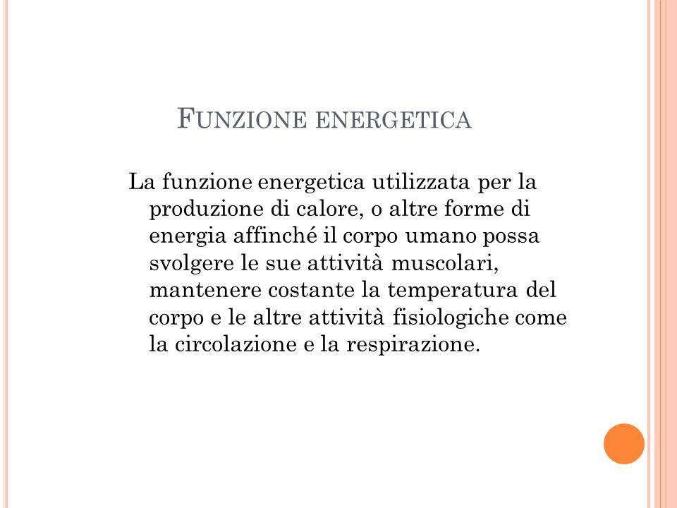 Funzione energetica