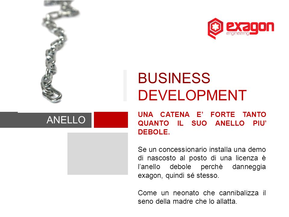 BUSINESS DEVELOPMENT ANELLO DEBOLE