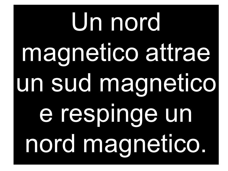 Un nord magnetico attrae un sud magnetico e respinge un nord magnetico.