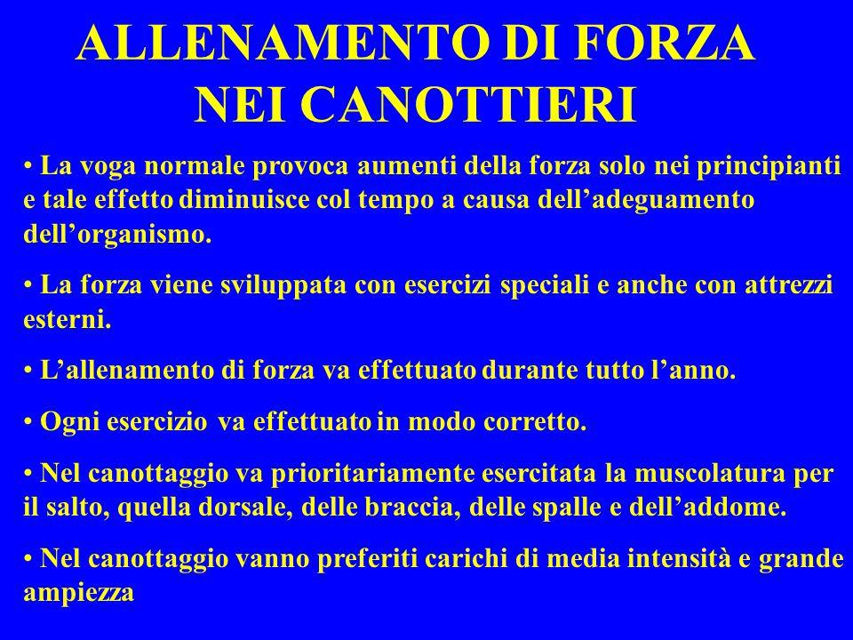 ALLENAMENTO DI FORZA NEI CANOTTIERI
