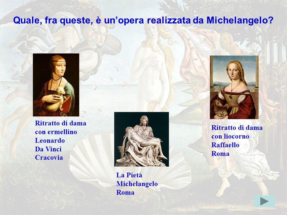 michelang4giusta Quale, fra queste, è un'opera realizzata da Michelangelo Ritratto di dama. con ermellino.