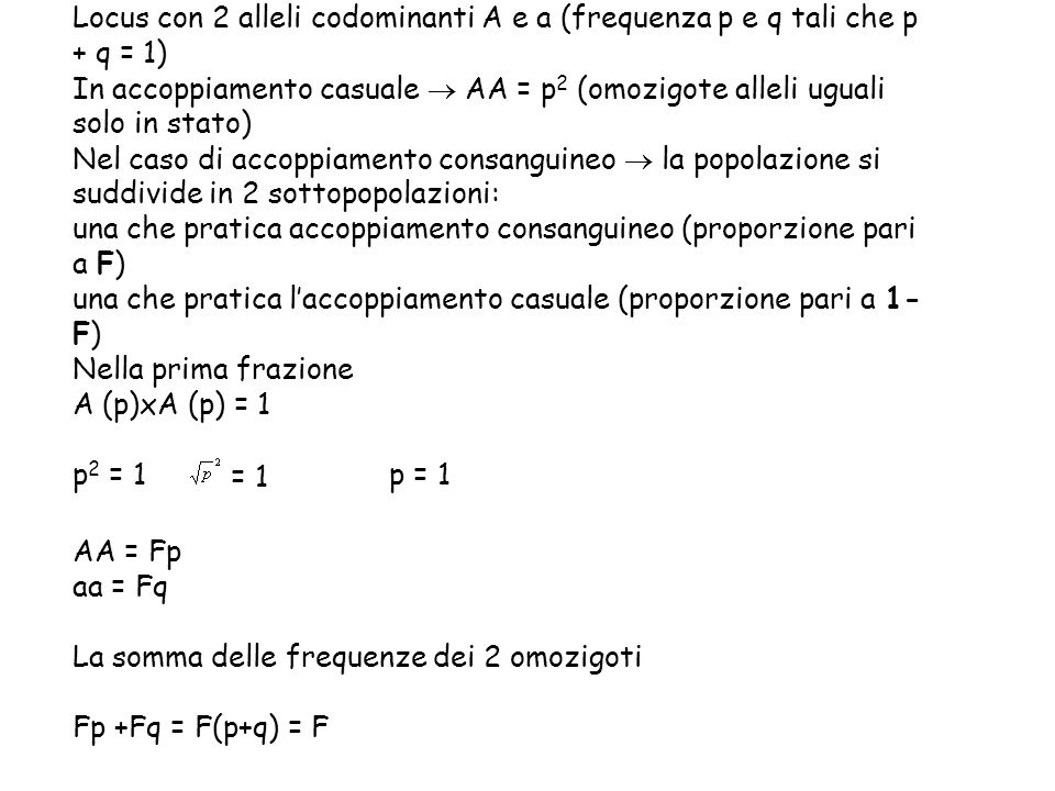 Locus con 2 alleli codominanti A e a (frequenza p e q tali che p + q = 1)