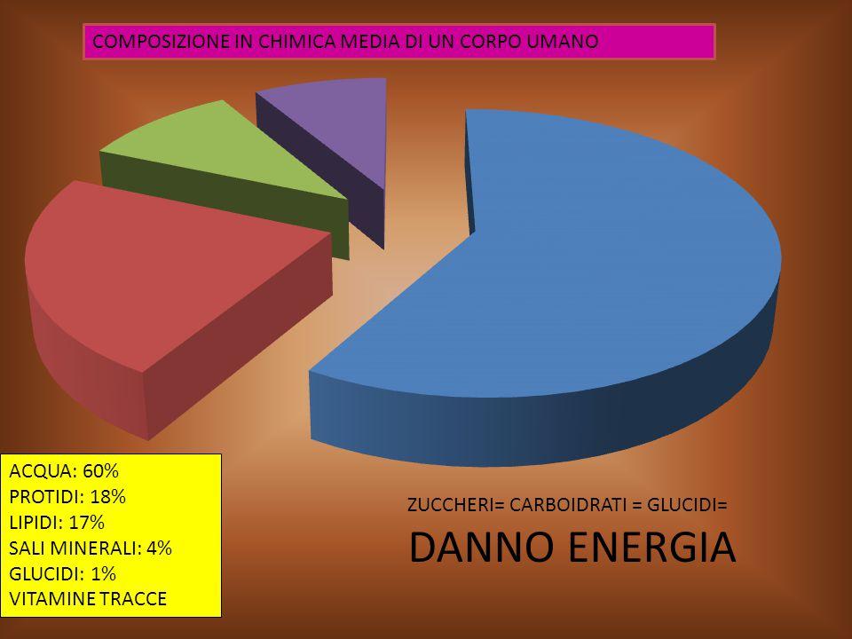 DANNO ENERGIA COMPOSIZIONE IN CHIMICA MEDIA DI UN CORPO UMANO