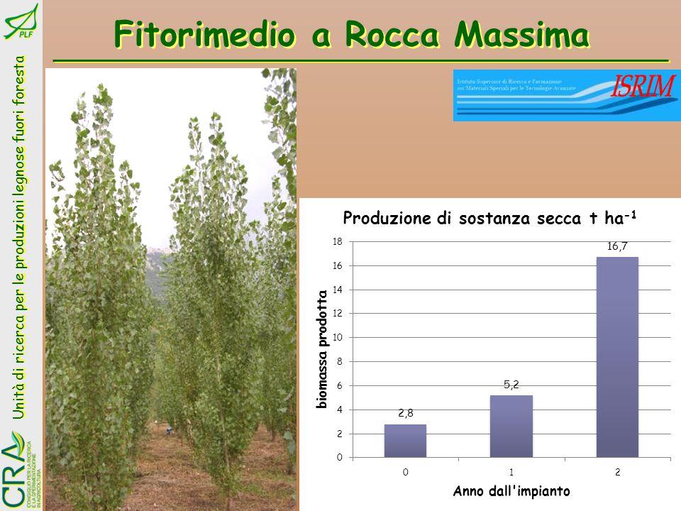 Fitorimedio a Rocca Massima