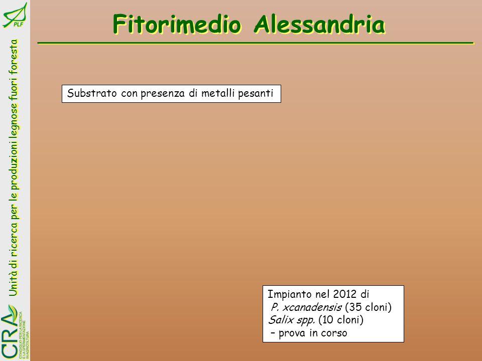 Fitorimedio Alessandria