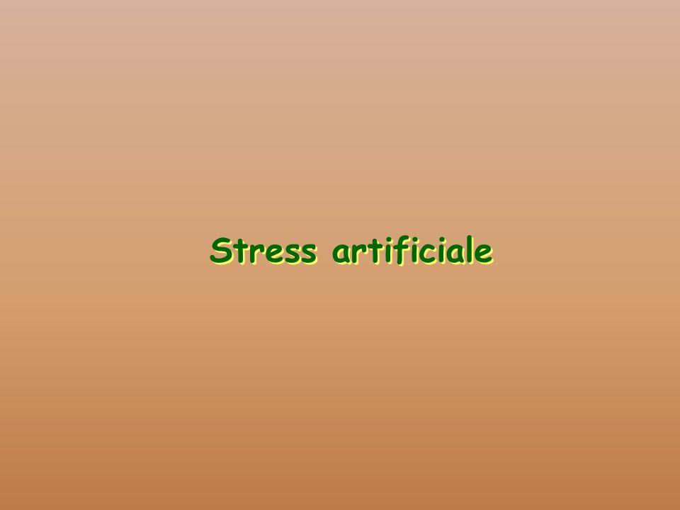 Stress artificiale